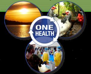 One_Health_sm